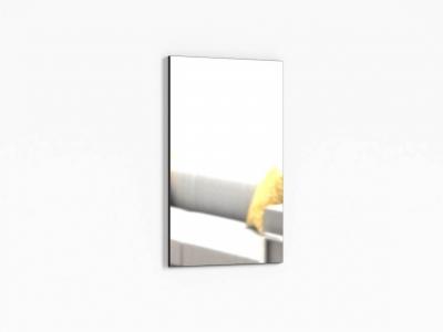 Зеркало настенное Крокус ПР-ШН-1-1 600х20х1000 Дуб Миланский