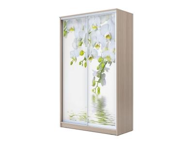 Шкаф-купе Хит 2-х дверный Орхидея Ясень шимо светлый